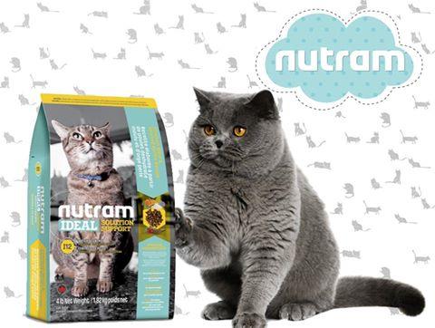 nutram для кошек фото